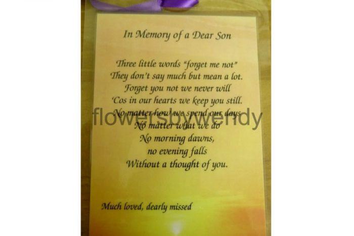 In Memory Of A Dear Son
