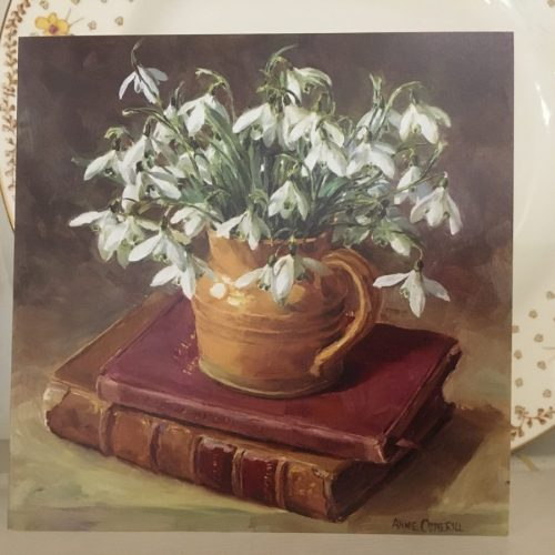 Anne Cotterill Snowdrops