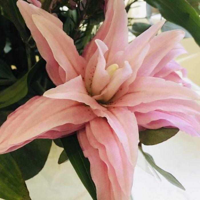 Divine Valentines Bouquet